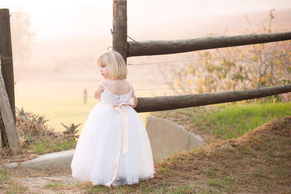 Weddings 16