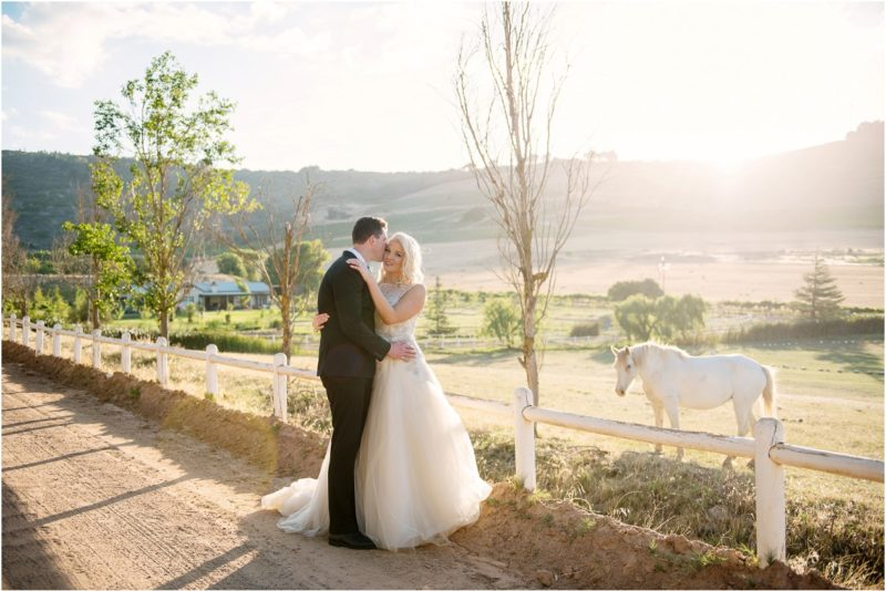 The Princess Bride: Charming Cape Winelands